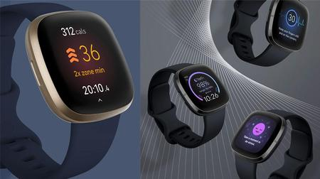 Methods to learn Fitbit well being and health scores, stats and measurements