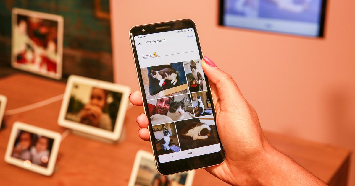 Google Photos ends unlimited free storage tomorrow. Here's everything you need to do