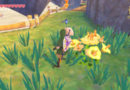Zelda: Skyward Sword HD Insects And Potion Infusions Guide